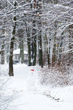 Snowman in the winter wood stock image