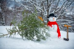 Snowman Woodcutter with axe in the winter forest. SnowMan is going to cut a christmas tree. Snowman with freshly cut. Down christmas tree in forest stock photos