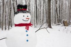 Snowmananseende i fallande Snow Royaltyfria Foton
