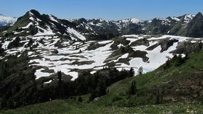 Snowmelt in July Royalty Free Stock Photo