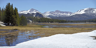Snowmelt in Tuolumne Meadows Royalty Free Stock Images