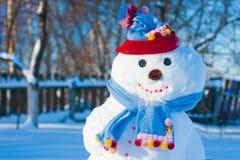 snowmen Royaltyfria Foton
