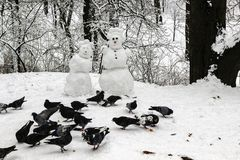 Snowmen couple in the winter forest. Pigeons peck bread pieces. Made by hand royalty free stock photo