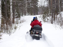 Snowmobile is accelerating in the forest Royalty Free Stock Image