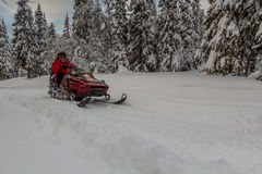 Snowmobile in the forest Royalty Free Stock Photography