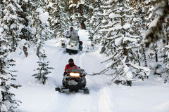 Snowmobile in the forest Royalty Free Stock Image