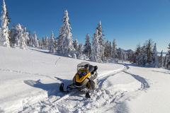 Snowmobile in forest. Snowmobile is in the winter forest but the trail Royalty Free Stock Images