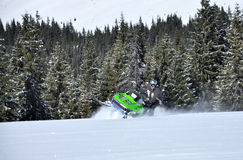 Snowmobile rider. In action against forest background Stock Photos