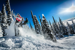 Snowmobile Tail Stand Trick Royalty Free Stock Images