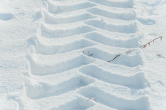 Snowmobile track mark on the snow Stock Image