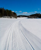 Snowmobile tracks 2 Stock Photography
