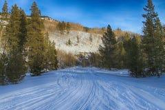 Snowmobile Tracks Stock Photos