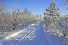 Snowmobile trail Stock Images