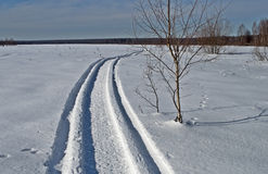 Snowmobile trail in winter field Royalty Free Stock Photo