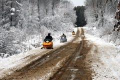 snowmobilers 库存照片