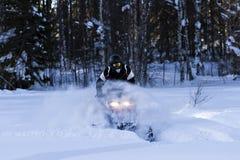 Snowmobiling στη βαθιά σκόνη στον πιό forrest Στοκ Εικόνες