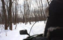 Snowmobiling dans les bois Photo stock