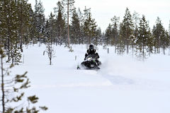 Snowmobiling in deep powder in the  forrest Royalty Free Stock Photos