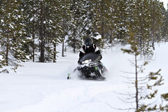 Snowmobiling in the forrest Stock Photo