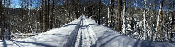 Snowmobiling la ligne de tramway Photos stock
