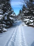 Snowmobiling le backcountry Images stock