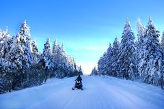 Free Snowmobiling On Snowy Mountain Road With Snow Covered Pine Trees Royalty Free Stock Image - 122528196