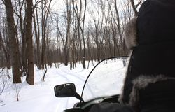 Snowmobiling in the woods Stock Photo