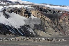 Snowmountans i Antarktis Royaltyfri Bild