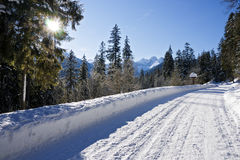 Snown road Stock Image
