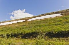 Snowpacks de montagne Photo stock