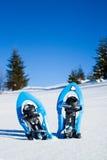 snowplowing的 加拿大照片魁北克雪snowshoeing的雪靴 库存照片