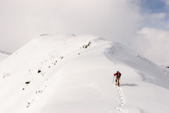 snowplowing的 库存照片