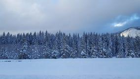 Snowqualmie通行证,华盛顿1 免版税图库摄影