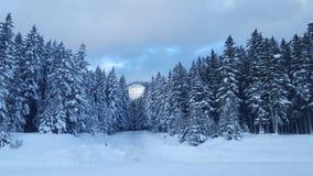 Snowqualmie通行证,华盛顿3 免版税库存图片