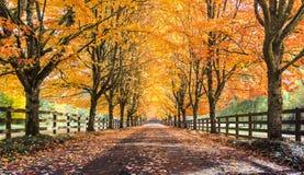 Snowqualmie-Fall-Farben Lizenzfreies Stockfoto