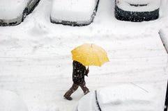 snows Royaltyfri Fotografi