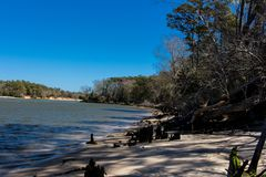 Snows Cut in North Carolina connects the Cape Fear River with the North Bound Inter Coastal Waterway. Strong current. Blue sky. trees Stock Photos