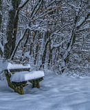 It snows over bench. A beautiful winter day in park, Dumbrava park, Sibiu city, Romania royalty free stock images
