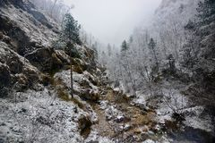 It snows in the valley of the stream. The beauty of winter from the great frozen and snow-covered landscapes Royalty Free Stock Photo