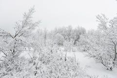 Красивое snowsacpe Стоковое Изображение