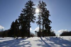 Snowscape和暗藏的塔 库存图片
