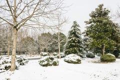 Snowscape живописной местности усыпальницы Ming Стоковые Изображения