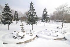 Snowscape au Hokkaido, Japon Photo stock