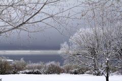 Snowscape con el lago y el cielo tempestuoso Foto de archivo libre de regalías