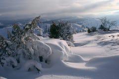 Snowscape de la mañana fotos de archivo libres de regalías