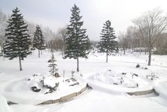 Snowscape im Hokkaido, Japan Stockfoto