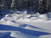 Snowscape Minnesota del Nord immagine stock