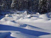 Snowscape Noordelijk Minnesota stock afbeelding
