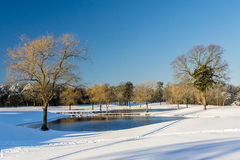 Snowscape. Snow covered landscape with small pond and bare trees Stock Photography