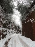 Snowscape-Weg Stockfoto